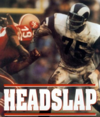 hits_headslapbook
